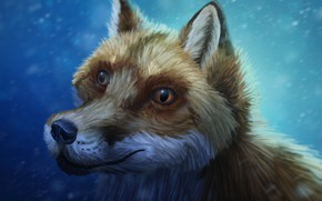 Picture snow, Fox, by CreeperMan0508