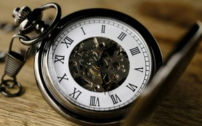 Picture Mechanism, Roman numerals, Pocket watch