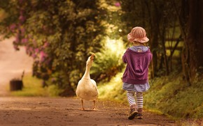 Picture road, girl, goose