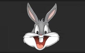 Picture Rabbit, Cartoon, Looney Tunes, Bugs Bunny, Bugs Bunny, Bugs Bunny
