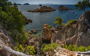 Picture sea, trees, landscape, nature, rocks, France