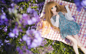 Picture flowers, hair, doll, dress