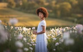 Picture Beautiful, Jayda, white poppies