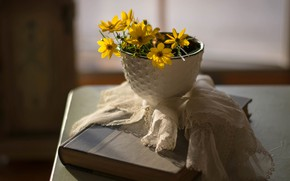 Picture flowers, table, Cup, book