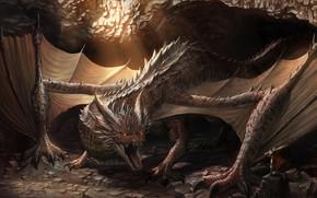 Picture dragon, cave, knight