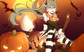 Picture girl, pumpkin, broom, Hatsune Miku, Vocaloid, Vocaloid, Halloween, Hatsune Miku