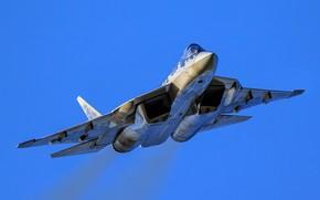 Picture T-50, PAK FA, Su-57, multi-role fighter