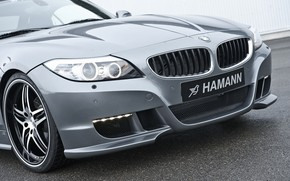 Picture grey, BMW, Roadster, Hamann, 2010, the front part, E89, BMW Z4, Z4