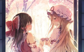 Picture touhou, strikingly is wait, hakurei reimu, shinoba