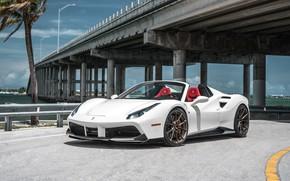Picture Ferrari, Ferrari, Sports car, Sport Car, F488, Ferrari F488