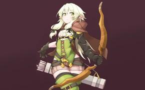 Picture Elf, Anime, Art, Character, Archer, The killer of goblins, Goblin slayer
