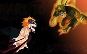 Picture game, Bleach, Naruto, anime, Ichigo, ninja, asian, manga, shinobi, Naruto Shippuden, oriental, asiatic