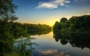 Picture trees, river, morning