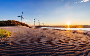 Picture sand, shore, windmills, pond