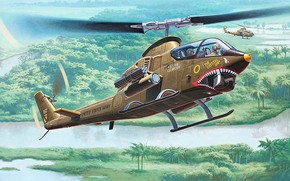 Picture Cobra, Bell, combat helicopter, American attack helicopter, AH-1G