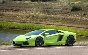 Picture Lamborghini, Green, river, Aventador