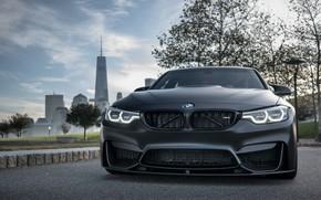 Picture BMW, Light, Predator, Black, F80, Adaptive LED, Evel Sight