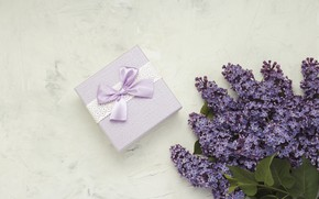 Picture gift, bouquet, lilac