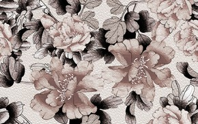 Picture leaves, flowers, background, Background, Pattern, Floral