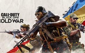 Picture weapons, Activision, Treyarch, Call Of Duty Black Ops Cold War