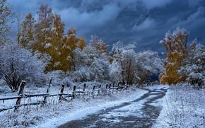 Picture road, autumn, snow, trees, the fence, Kazakhstan, Евгений Дроботенко, Рудный Алтай