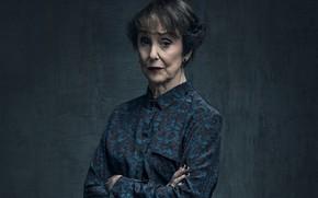 Picture woman, Sherlock, Sherlock, Sherlock BBC, Hudson, Sherlock Holmes, Sherlock (TV series)