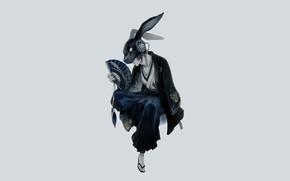 Picture minimalism, rabbit, mask, fan, guy, ears