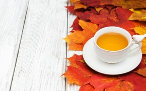 Picture autumn, leaves, background, Board, colorful, maple, wood, autumn, leaves, cup, tea, maple, Cup of tea