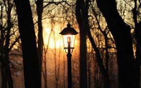 Picture winter, light bulb, the sun, sunset, Park, lighting, lantern, Kaluga