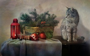 Picture cat, cat, branches, table, holiday, toys, new year, spruce, lantern, fabric, basket, needles, Kovaleva Svetlana, …