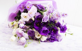 Picture white, flowers, background, purple, tape, eustoma, Timolina