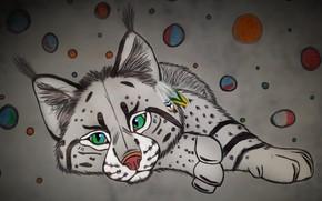 Picture cat, figure, art, lynx