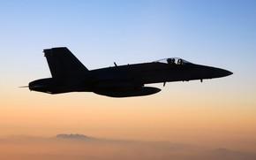 Picture the plane, fighter, silhouette