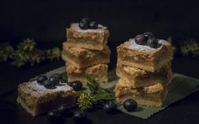 Picture berries, blueberries, pie, cakes, powdered sugar, biscuit