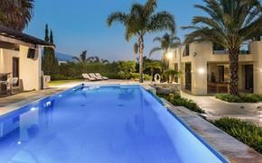 Picture palm trees, Villa, the evening, pool, architecture, dusk, luxury villa, азотея, Nuevo Banus, Puerto Banus