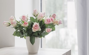 Picture table, roses, bouquet, window, gentle