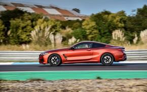 Picture movement, coupe, BMW, profile, Coupe, 2018, 8-Series, dark orange, M850i xDrive, Eight, G15