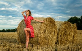 Picture field, girl, sexy, model, hay, legs, dress, Ananda, Dmitry Medved