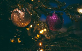 Picture winter, balls, branches, the dark background, holiday, balls, Shine, lights, Christmas, New year, tree, garland, …
