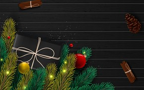 Picture photo, Branches, Balls, New year, Bumps, Gifts, Cinnamon, Vector graphics