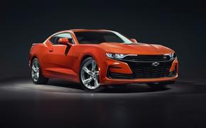 Picture Chevrolet, Orange, Camaro, 2SS