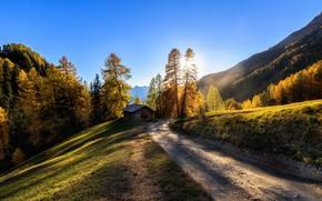 Wallpaper road, autumn, mountains, Italy