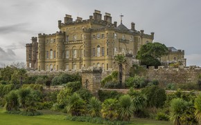 Picture trees, Park, castle, Culzean Castle