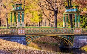 Picture autumn, leaves, trees, bridge, Park, river, colorful, river, nature, bridge, park, autumn, leaves, tree