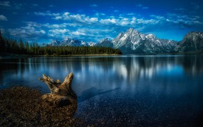 Picture forest, mountains, lake, Wyoming, snag, Wyoming, Grand Teton National Park, Rocky mountains, Rocky Mountains, National …