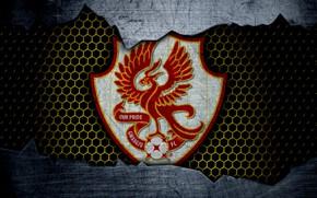 Picture wallpaper, sport, logo, football, Gwangju