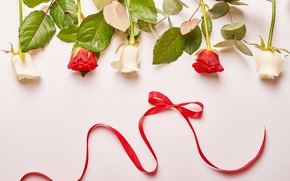 Picture background, roses, tape, red, white, red, composition