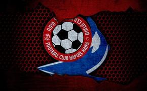 Picture wallpaper, sport, logo, football, Hapoel Haifa