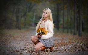 Picture autumn, leaves, girl, smile, Park, blonde, bokeh