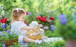 Picture foam, joy, flowers, mood, bathing, bubbles, girl, puppy, the barrel, bokeh